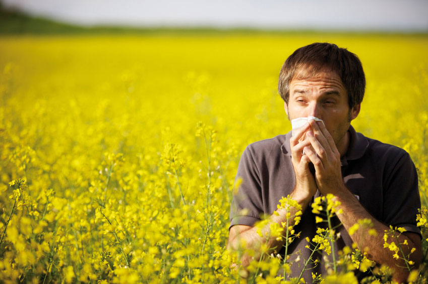 Аллергия поражает все больше людей