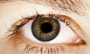 Капли для глаз провоцируют развитие глаукомы