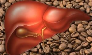 От рака печени защитит кофе