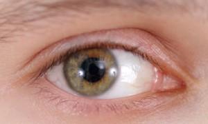 Как уберечь глаза от заболеваний осенью