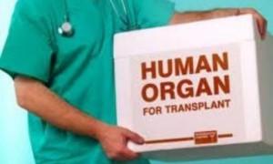 Минздрав РФ подготовил проект закона о донорстве и трансплантации органов