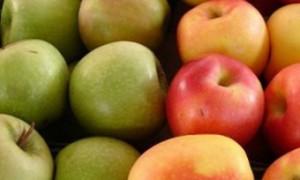 Британцы доказали актуальность викторианской пословицы о пользе яблок