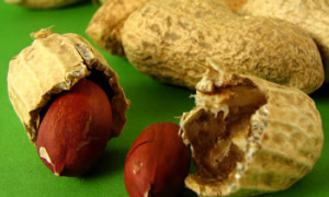 Британским медикам удалось найти средство от аллергии на арахис