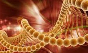 Найдены защищающие от диабета генетические мутации