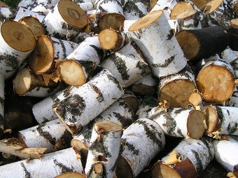 В Красноярском крае хирурга заподозрили в получении взятки дровами