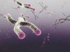 «Хорошие» гены имеют обратную сторону