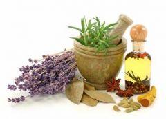 Лечение целлюлита: 8 растений, которые помогут выровнять кожу
