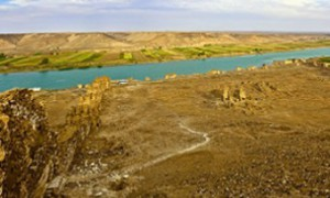 В долине Евфрата нашли 6-тысячелетнее яйцо шистосомы