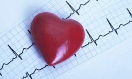 Российские учёные представили новый прибор для диагностики болезней сердца