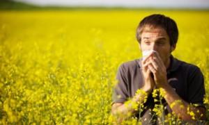 Как возникает аллергическая реакция