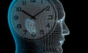 Биологические часы человека определяет РНК