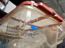 Пищевой пластик грозит пищевыми аллергиями и непереносимостью