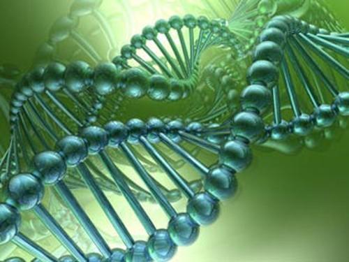 Великобритания выделила на проект «100 тысяч геномов» 300 миллионов фунтов
