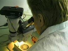 Высокий уровень сахара может привести к раку, показали исследования