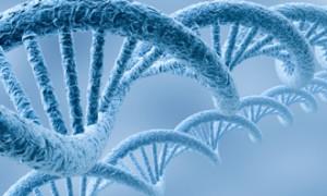 Методы лабораторной диагностики половых инфекций