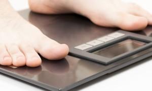 У барбариса обнаружили способность снижать вес