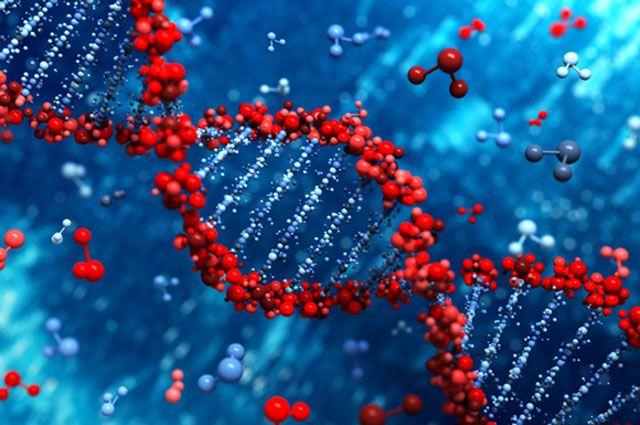 Ученые обнаружили гены, отвечающие за агрессивность человека