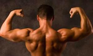 Мышцы: полезные упражнения