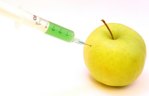 Ученые будут контролировать ГМО