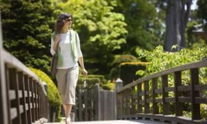 Ученые выяснили, что ежедневные прогулки помогают продлить жизнь