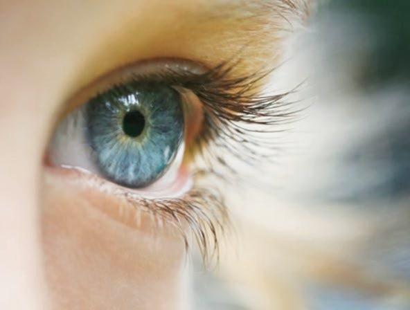 Установлен спусковой механизм возрастной болезни зрения