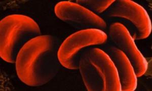 Характер человека зависит от группы крови