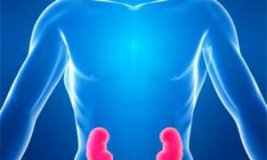 Почечнокаменная болезнь с рецидивирующим течением связана с повышенным риском кальцификации артерий