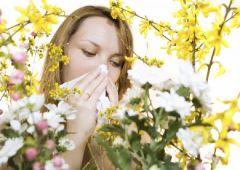 Весна – испытание для аллергиков