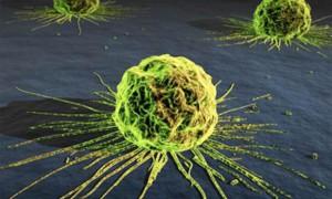 Прогнозировать рак можно за 13 лет до начала развития болезни