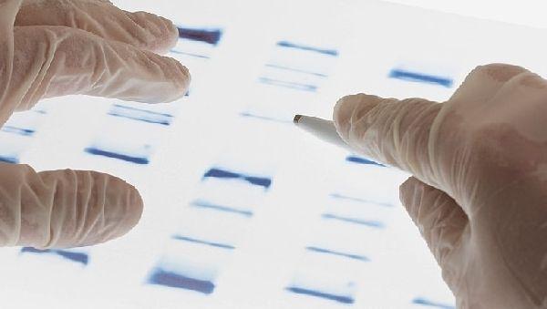 Эксперты будут определять эффективность лекарств индивидуально