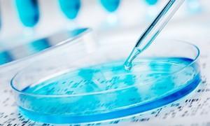 Открыта новая система редактирования генома человека
