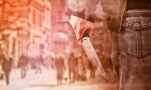 Новосибирские ученые обнаружили ген жестокости