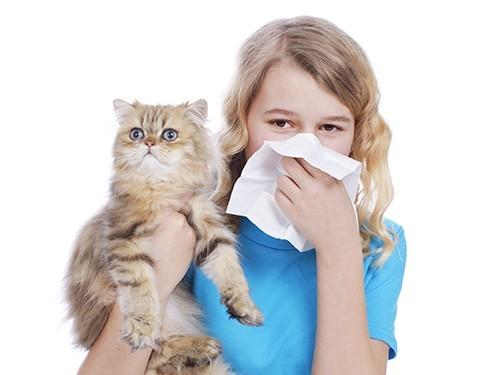 Компьютерный анализ помог разобраться в причинах аллергии