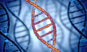 Испытания направленного редактирования генома человека начнутся в течение двух лет