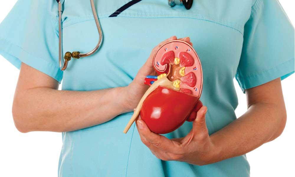 Уровень растворимого рецептора урокиназоподобного активатора плазминогена как предиктор развития хронической болезни почек
