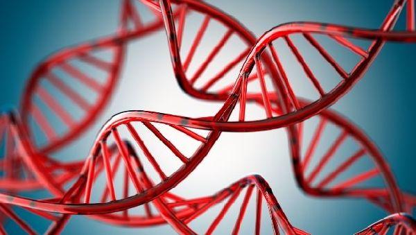 Генетические мутации собираются приструнить