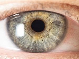 Статины предотвратят развитие слепоты