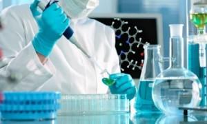 Водоросли и стволовые клетки ускорят заживление ран