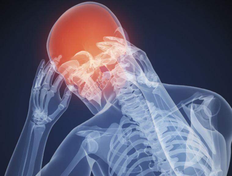 Мелисса, ромашка и капуста помогут при головных болях