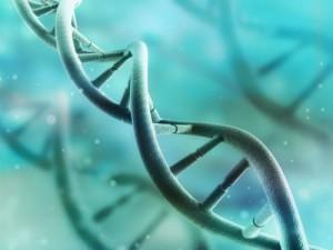 Открылась первая в России международная лаборатория медицинской генетики