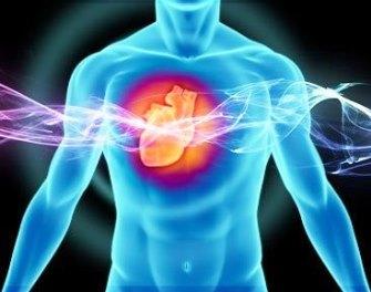 Корень любистка и лимонная корка помогут при хронической сердечной недостаточности