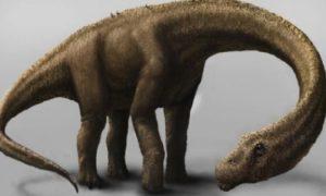 Ученые объяснили эволюцию динозавров