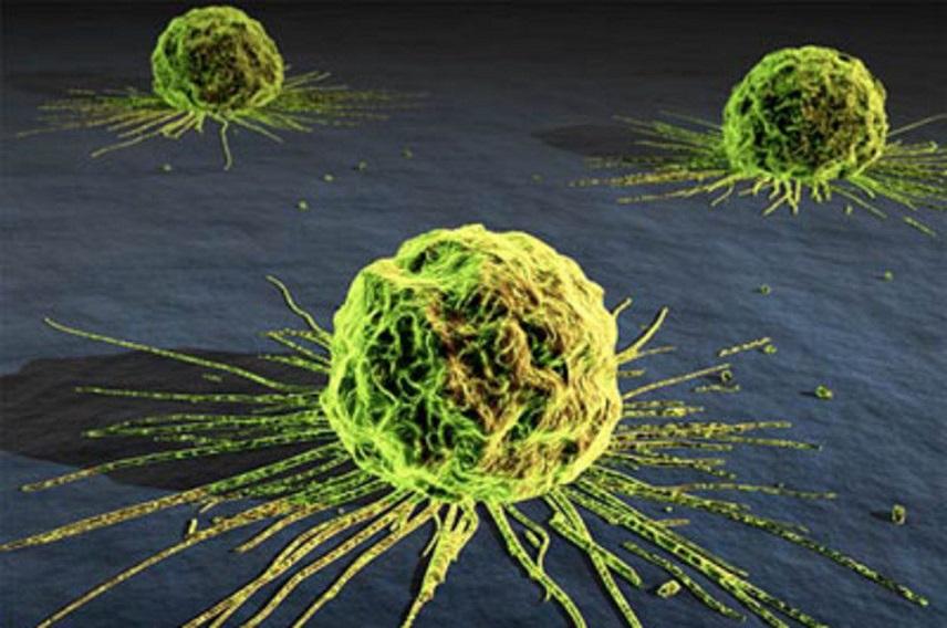 Японцы создали уникальный метод диагностики рака