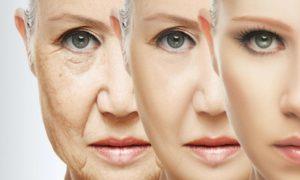 Названа причина старения организма