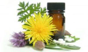 Растительные препараты способны причинить вред для здоровья