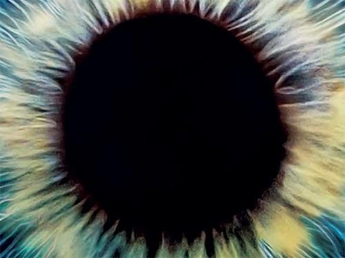 В Японии начнут лечить заболевания глаз с помощью донорских клеток