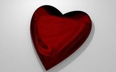Новосибирские ученые разработали дешевое искусственное сердце