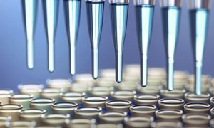 В Москве создали «белковый конструктор» для диагностики и лечения болезней