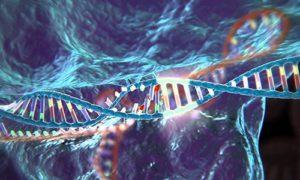 В США могут разрешить редактировать человеческий геном