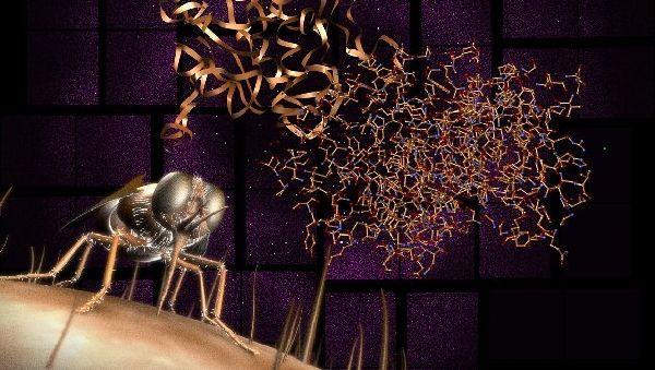 Рентгеновские лазеры – новое слово в молекулярных исследованиях